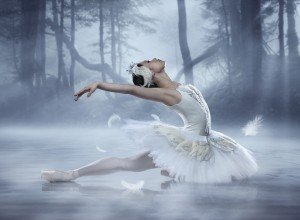 Swan_Lake_Sophia_Lee